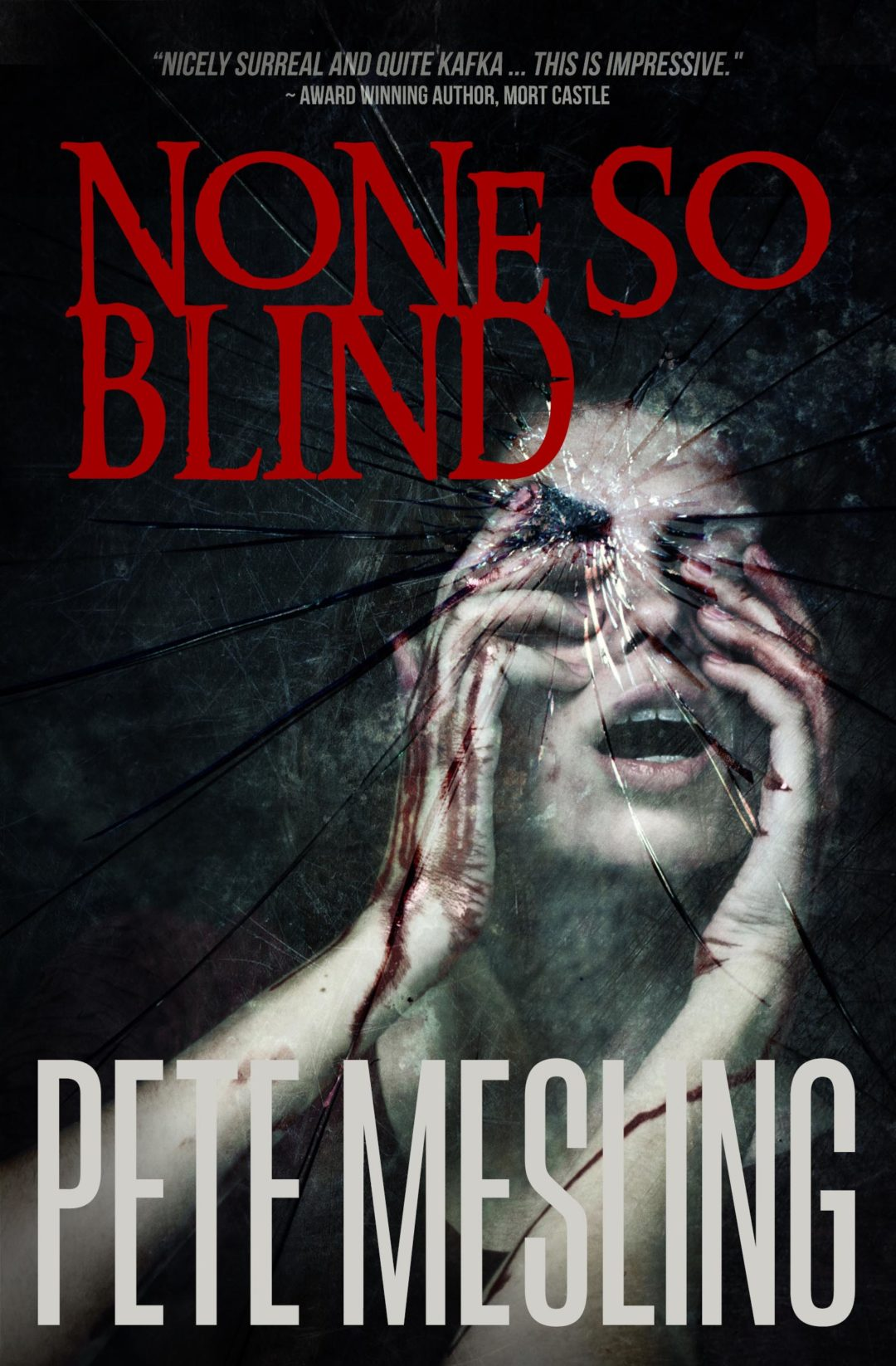None So Blind by Pete Mesling Book